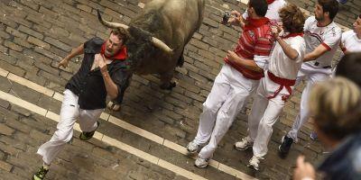 Sapte oameni au fost ucisi de tauri in Spania