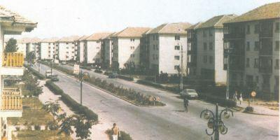 Ultima speranta pentru Scornicesti, locul din care Ceausescu facuse un rai in comunism: