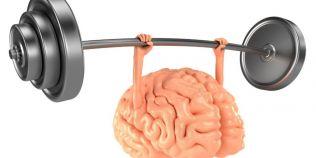 Creierul nefolosit rugineste. Sase reguli care mentin mintea limpede