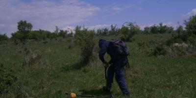Au descoperit o adevarata comoara la cativa kilometri de Cluj. Cui au apartinut piesele si din ce perioada sunt
