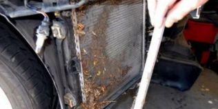 Cum se ingrijeste corect radiatorul masinii pentru a nu face praf motorul